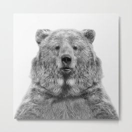 Bear European Metal Print