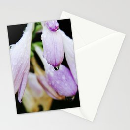 flower.4 Stationery Cards