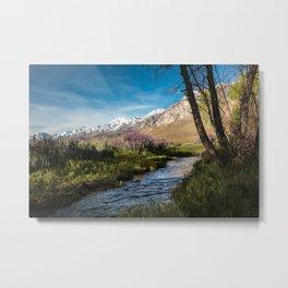 Eastern Sierra Springtime Babbling Brook   4-6-20  Metal Print