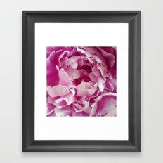 I Love peonies Framed Art Print