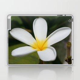 A Single Plumeria Flower Macro  Laptop & iPad Skin