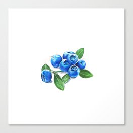 Bunch o' Blueberries Canvas Print