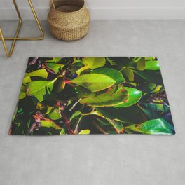 closeup green leaves garden texture background Rug
