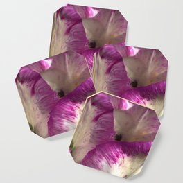 Silhouette in tulip petals Coaster