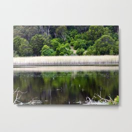 Tower Hill Wildlife Reserve Metal Print