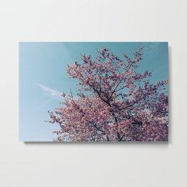 Blossom Into Spring Metal Print