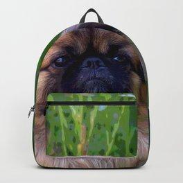 Lion Dog Backpack