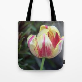 Pretty in Pink and Yellow Tote Bag