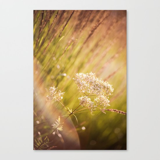 Jeweled Afternoon Canvas Print