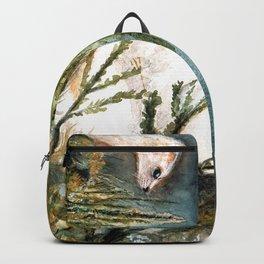 Winter stoat (c) 2017 Backpack
