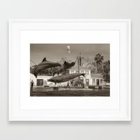 dolphin Framed Art Prints featuring Dolphin by Sébastien BOUVIER