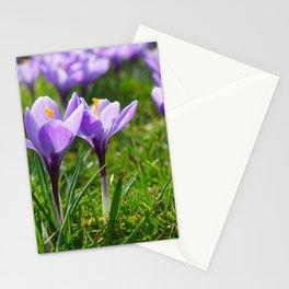 Purple Crocuses Stationery Cards