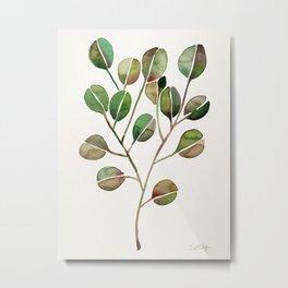 Silver Dollar Eucalyptus – Green Palette Metal Print