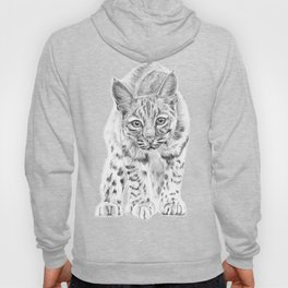 On the Prowl :: A Young Bobcat Hoody