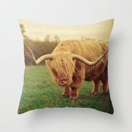 Scottish Highland Steer - regular version Throw Pillow
