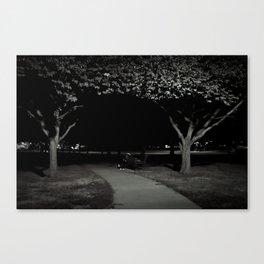 midnight sleeper Canvas Print