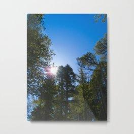 Mount Baden Metal Print