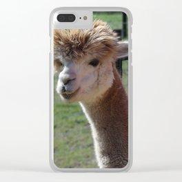Cordial Alpacas Lara-Belle Clear iPhone Case