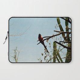 Red bird Laptop Sleeve