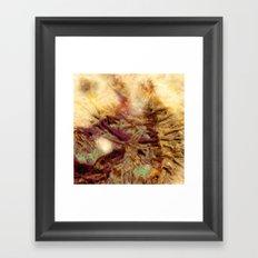 Dehiscence 10 Framed Art Print