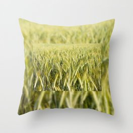 cereal plants grow plenty on field Throw Pillow