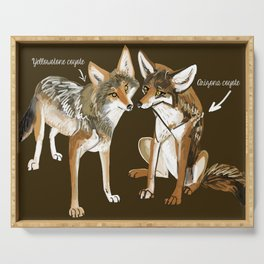Coyotes in love Serving Tray