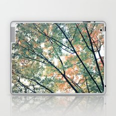 Paint Me Autumn Laptop & iPad Skin