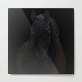 Frisian Stallion Metal Print