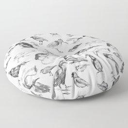 Manx Fauna - (British) Birds Floor Pillow