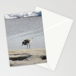 Hunchback of the Beach Stationery Cards
