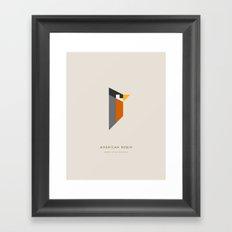 American Robin Framed Art Print