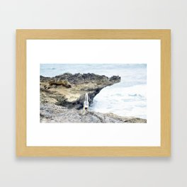 Corona Framed Art Print