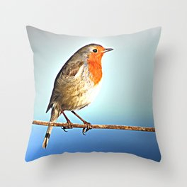 Robin Bird on Wire, Lonely Love Blue Photography Throw Pillow