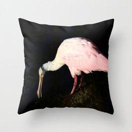 Roseate Spoonbill Pose Throw Pillow