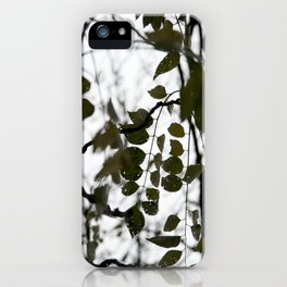 gently gentle #5 iPhone Case