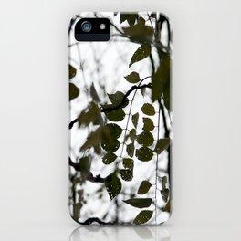 gently gentle #5 iPhone Case
