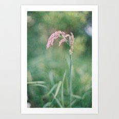 Grass I Art Print