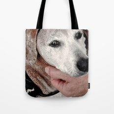 Portrait of a Dachshund Tote Bag