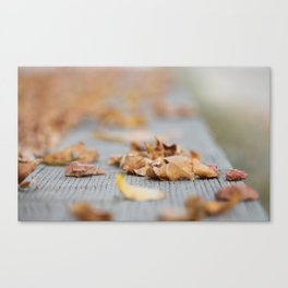 Crunch! Canvas Print