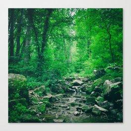 Verdant Creek Canvas Print