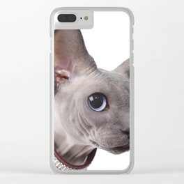 Canadian sphinx cat Clear iPhone Case