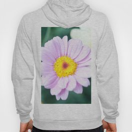 Soft Pink Marguerite Daisy Flower #1 #decor #art #society6 Hoody
