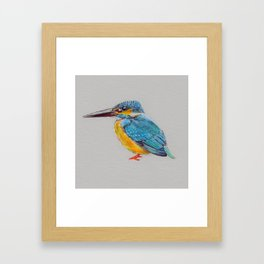 Kingfisher 6 Framed Art Print