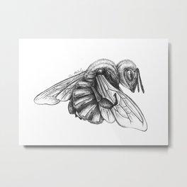 Things We Need (Bee Detail) Metal Print