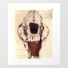 X Ray Terrestrial No. 3 Art Print