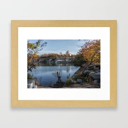 Foliage at Halibut quarry Framed Art Print