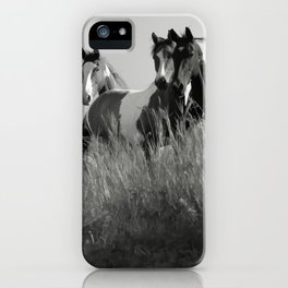 Cariboo Horses iPhone Case