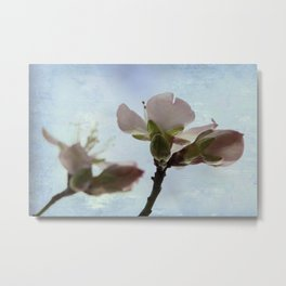 spring bloosoms Metal Print