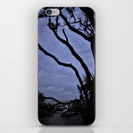 Entrance to Drift Wood Beach iPhone Skin