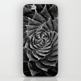 A Spiral of Infinite Succulents iPhone Skin